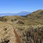 達磨山ハイキング。伊豆半島から駿河湾越しの富士山を見る(船原峠~金冠山)