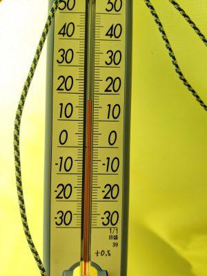 テント内18℃