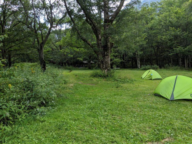 テント場の様子(徳沢ロッヂへ続く道)