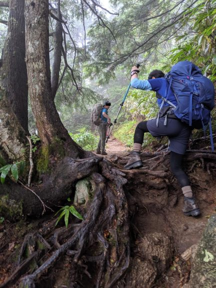 木の根を乗り越える人