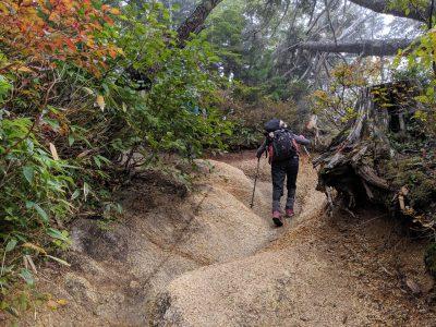 岩の道を歩く。少し紅葉も