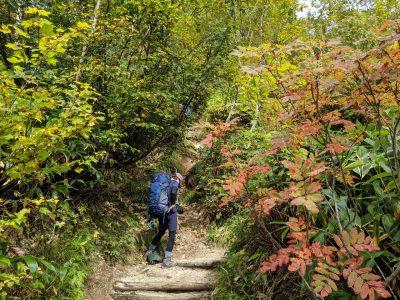 合戦小屋~燕山荘 紅葉の中を登る
