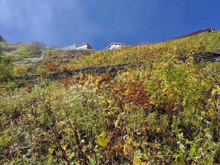 燕山荘を下から見上げる