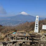 金時山でお手軽富士見ハイク(乙女峠~金時登山口)