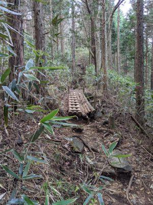 木で組まれた足場