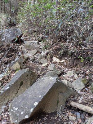 大きめな岩