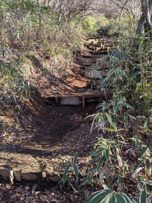 階段状の道