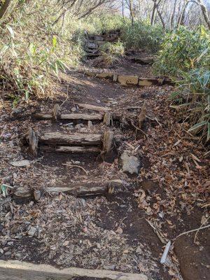 乙女峠から長尾山の登り坂