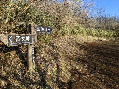 長尾山の標識(乙女峠まで10分、金時山まで35分)