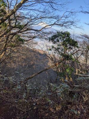 左手林の先に見える富士山