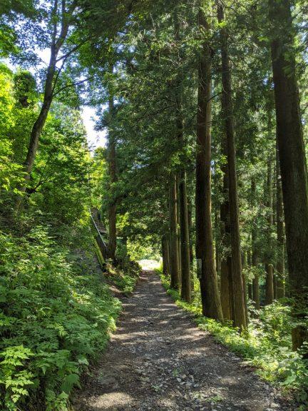 山楽荘の先の道
