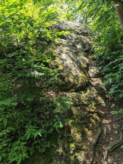 クロモ岩?