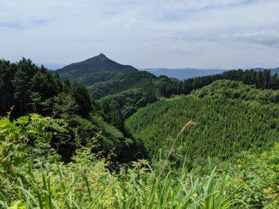 クロモ岩分岐下から金比羅尾根を望む(左、麻生山?)