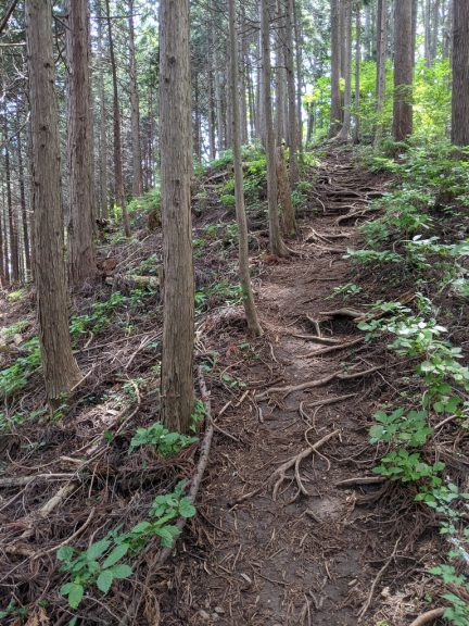 麻生山へ登る