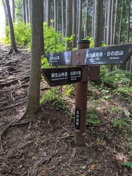 麻生山へ登る途中の分岐
