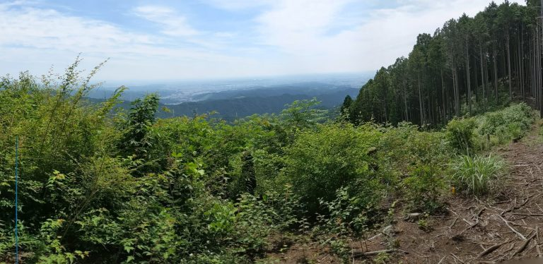 麻生山付近の道からの眺望