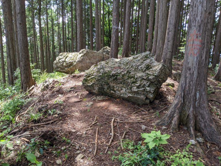 麻生山付近の道
