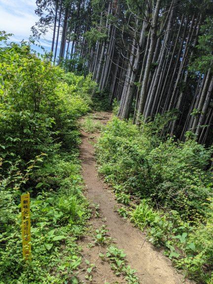 麻生山~幸神分岐