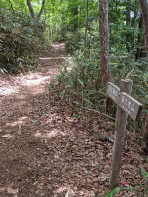 金比羅山・日の出山標識