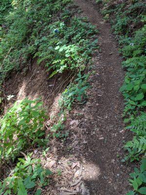 崩れかかった狭い道