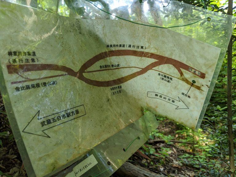 林業用作業道と登山道の位置関係を示す図