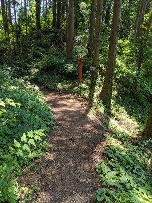 横根峠・瀬音の湯への分岐