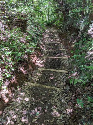 金比羅神社方面へ歩く