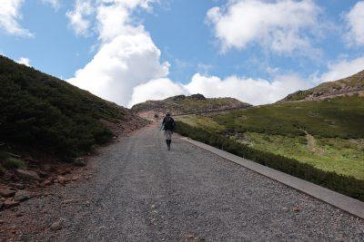 摩利支天岳との分岐へ