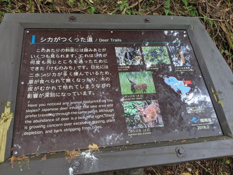 湯ノ湖周回線歩道の自然解説板