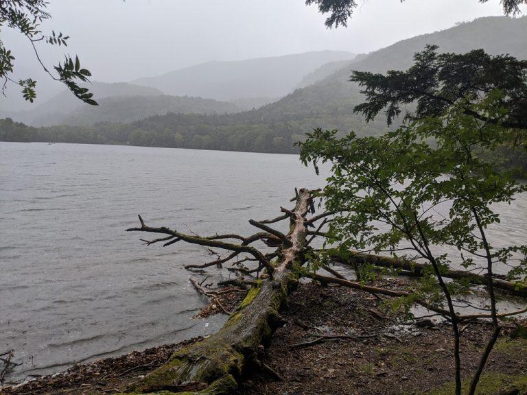 湯ノ湖周回線歩道で強い雨に降られる
