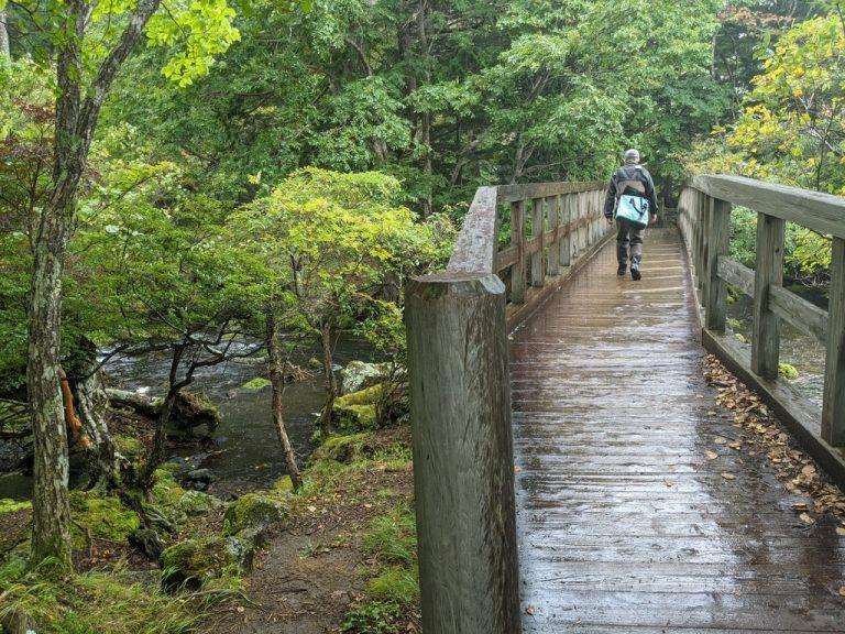 湯ノ湖周回線歩道