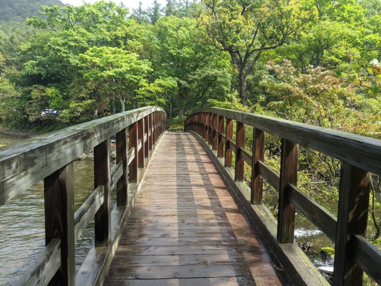 湯ノ湖周回線歩道 湯滝の上の橋