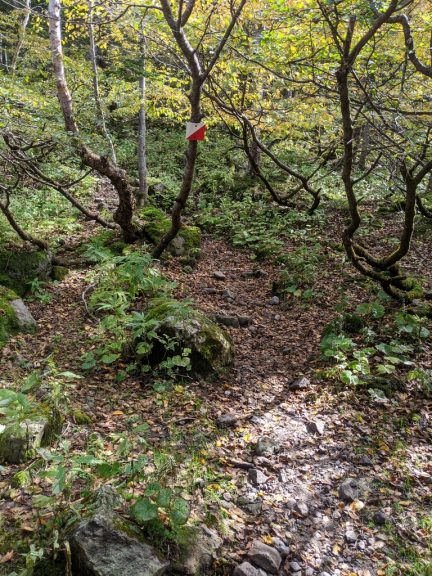 五色沼避難小屋から前白根山へ登る道