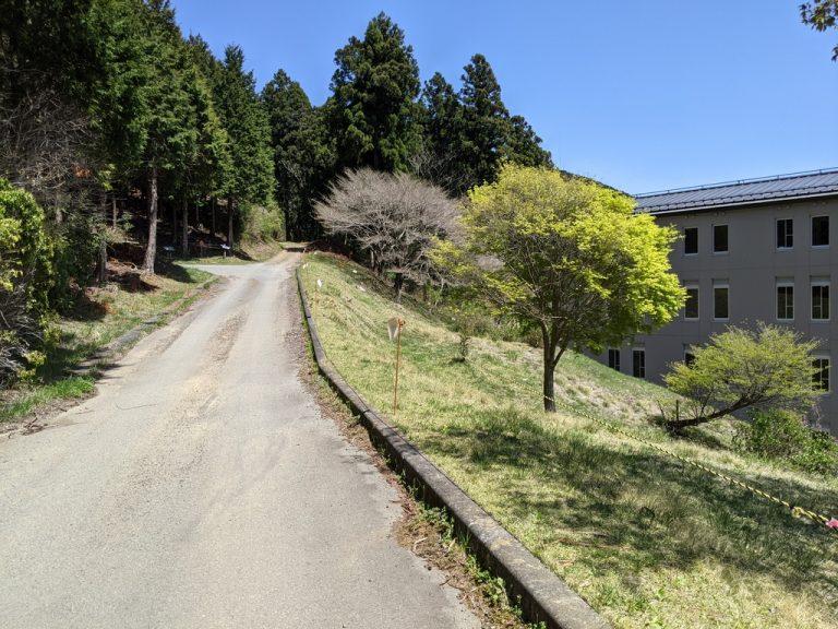 休暇村富士の西側