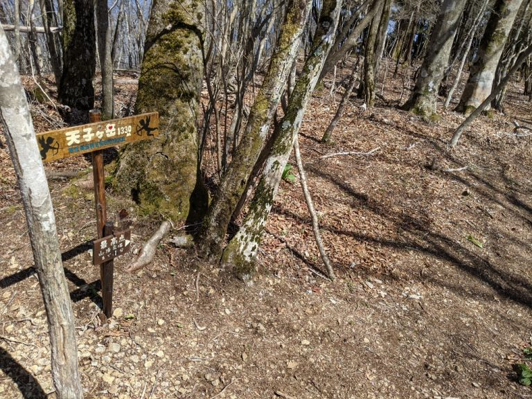 長者ヶ岳山頂標識