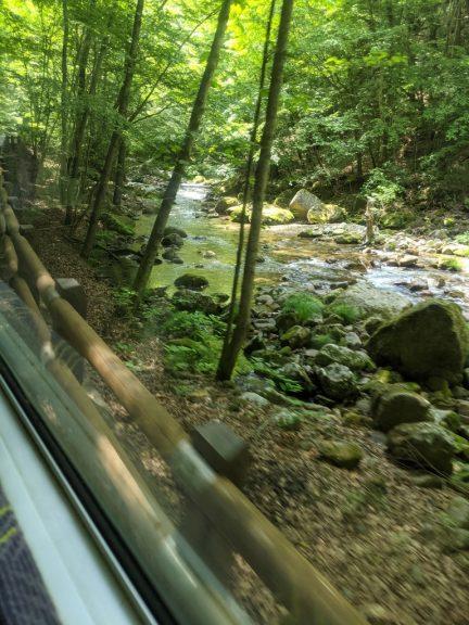 みずがき山荘行きバス 車窓