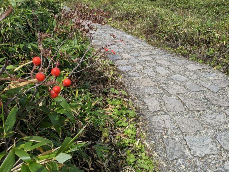 石畳の上を歩く