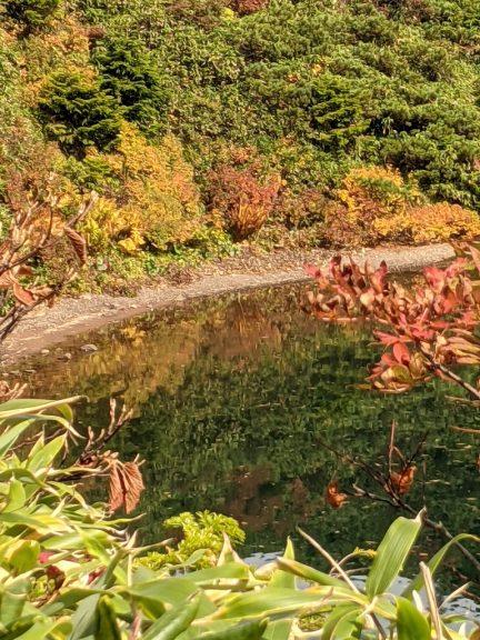 鏡沼に写る紅葉
