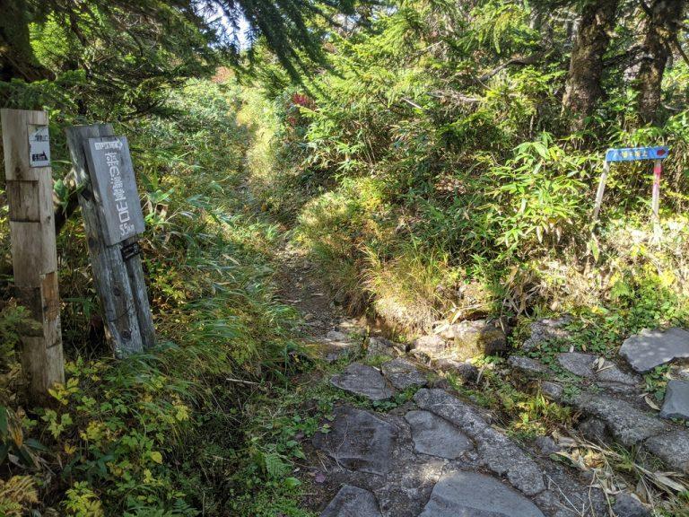 二つ目の分岐(蒸の湯登山口5.5km)