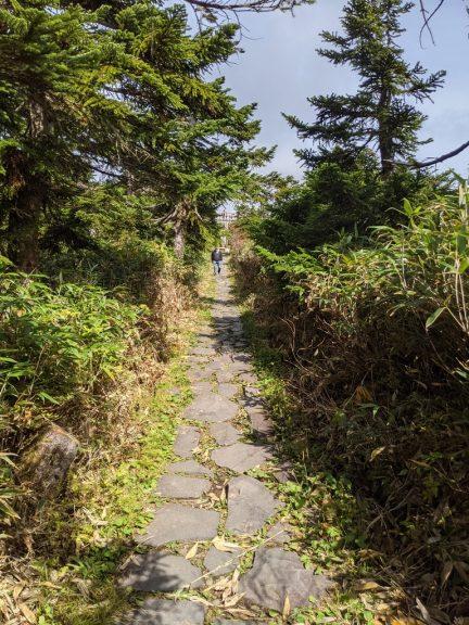 山頂へ続く真っ直ぐな道
