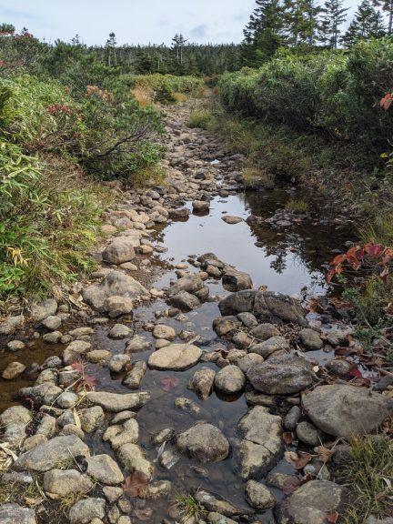 黒谷地~茶臼岳 水たまり