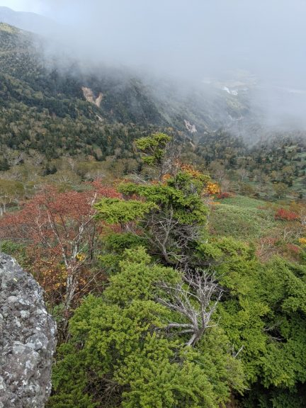 茶臼岳から見える紅葉