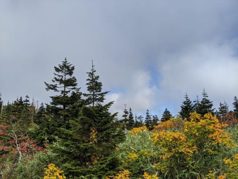 三ツ石山荘から雲の切れ間